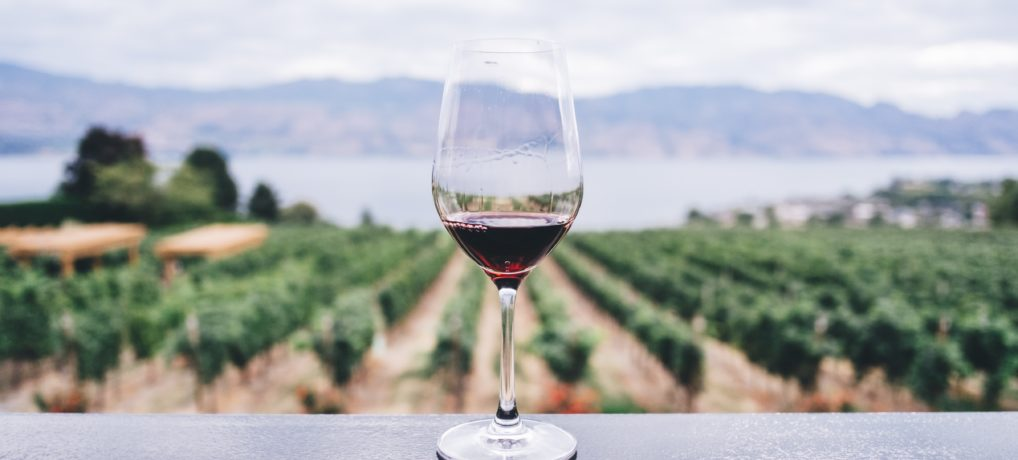 5 Northern Michigan Wineries to Visit