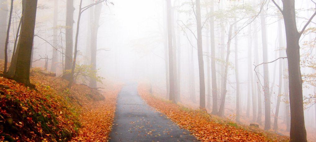 Upper Peninsula Fall Foliage Attractions