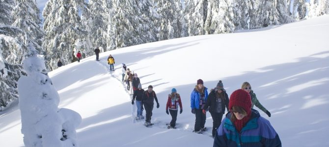 Winter Staycation Ideas in Michigan