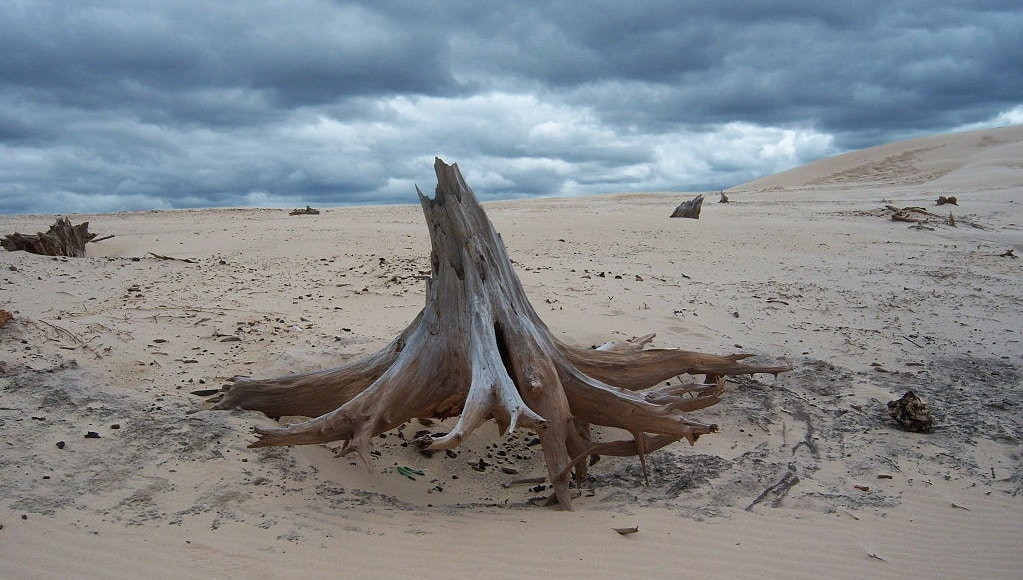 Silver Lake Sand Dunes Guide